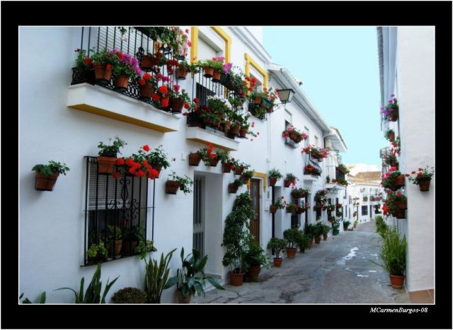 - Calle Maestra Ayala, Benalmádena -