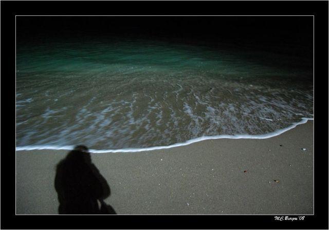 La Orilla y mi sombra-