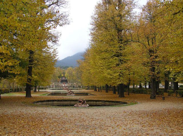 Jard n rom ntico y fuentes fotos de varias for Jardin romantico