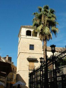 Torre y palmera