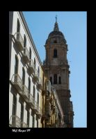 Torre Campanario de la Catedral de Málaga
