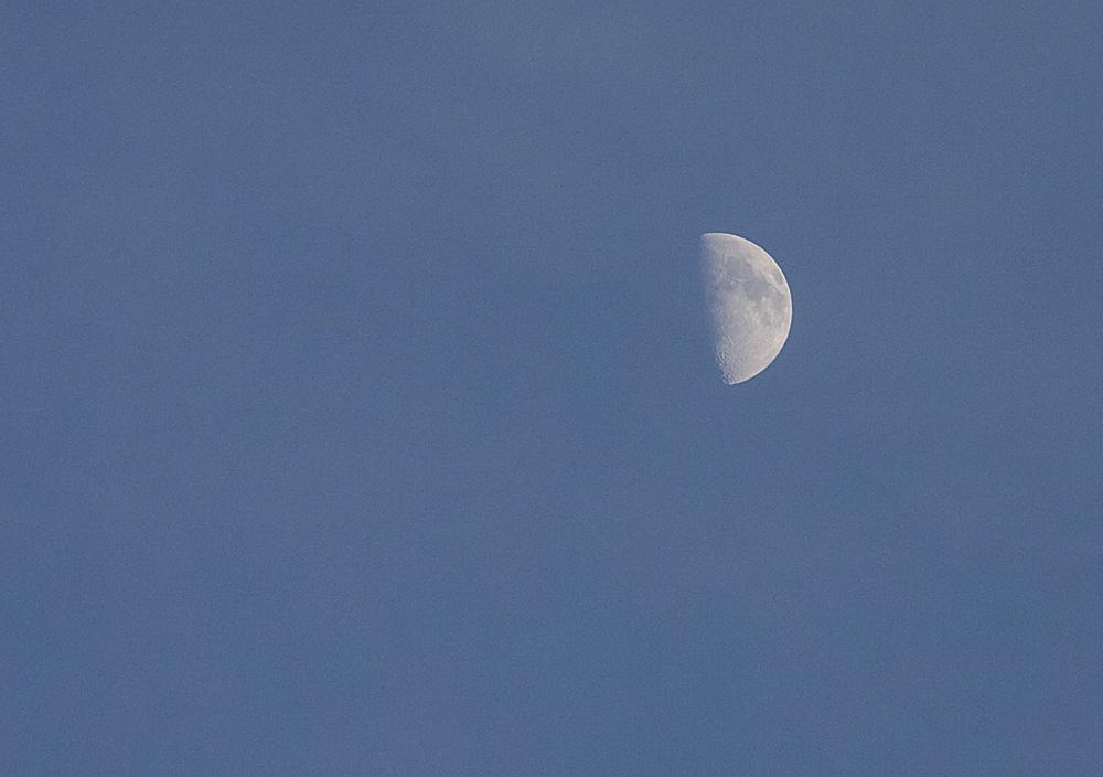 Luna en cuarto creciente | fotos de Nocturnas