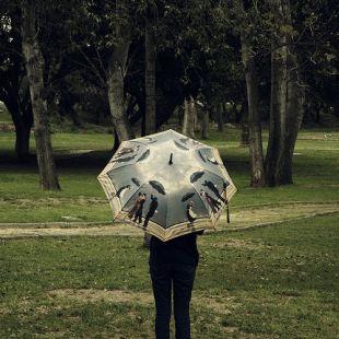 Sécame la lluvia