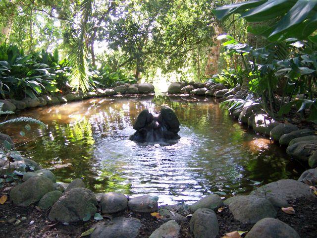 Jard n bot nico hist rico la concepci n fotos de m laga for Jardin botanico la concepcion