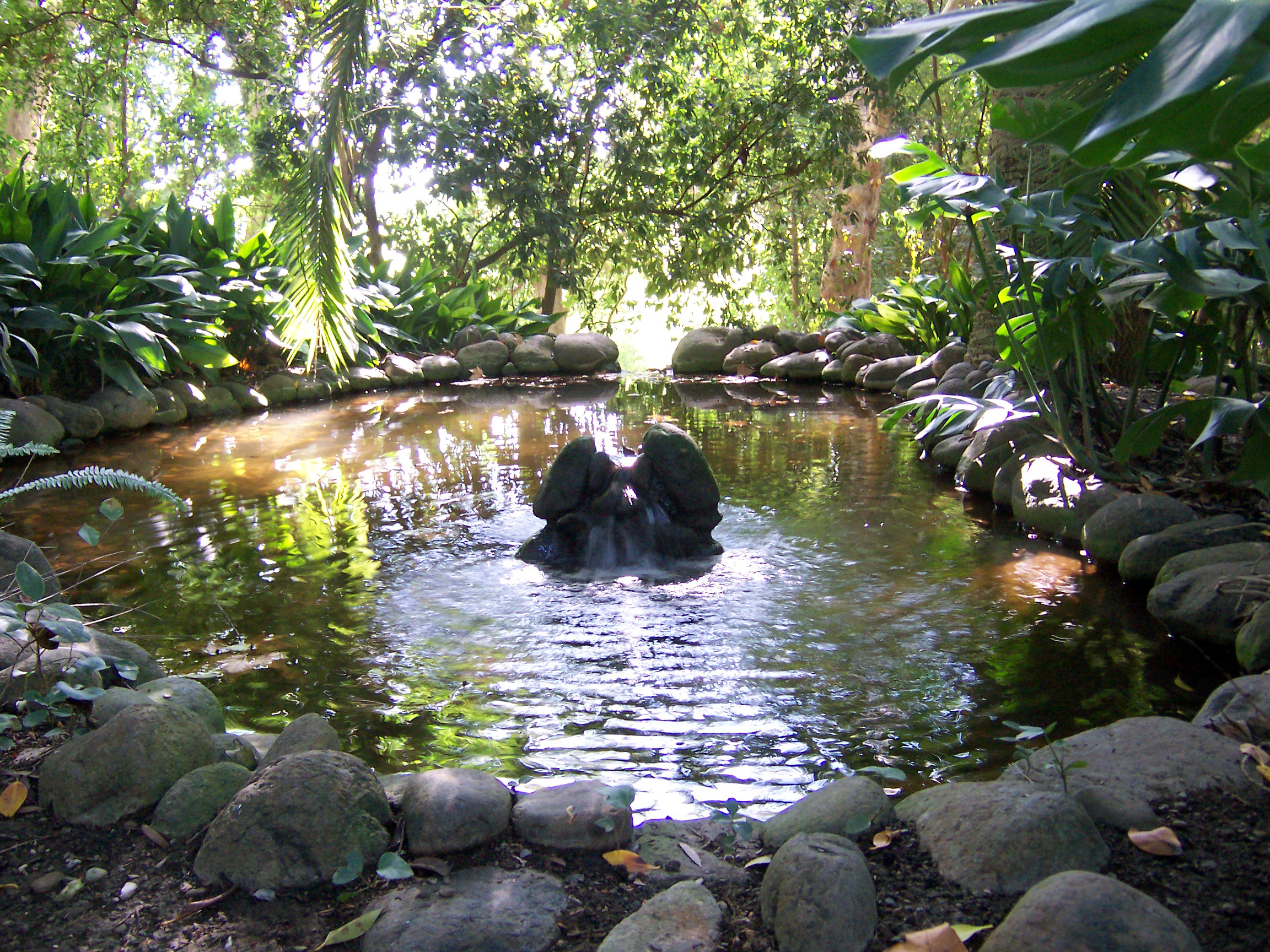 Jard n bot nico hist rico la concepci n fotos de m laga for Jardin botanico de malaga