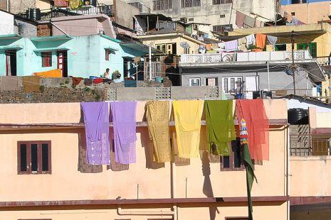 saris secando