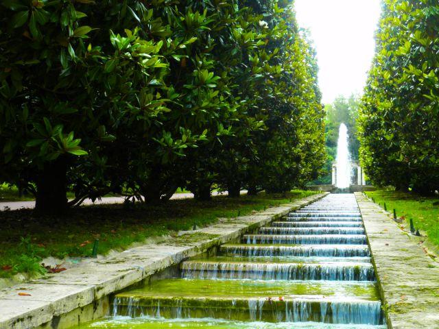 jardines joan maragall fotos de naturaleza