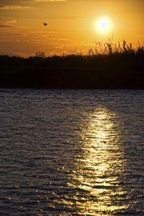 Atardecer en la desembocadura del río (Playa Torre del Mar)