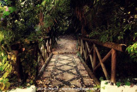 Puente a otra parte