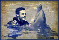 Mi amigo el Delfín