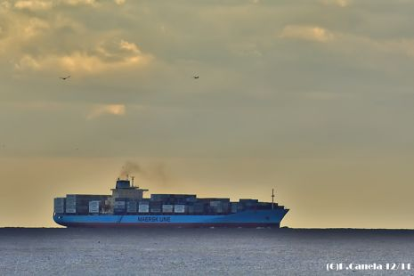 Maersk Laust