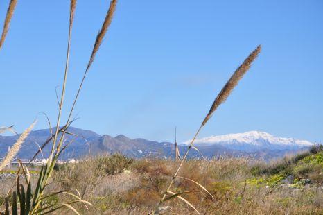 cañas,sol y nieve
