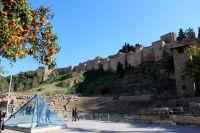La Alcazaba 35