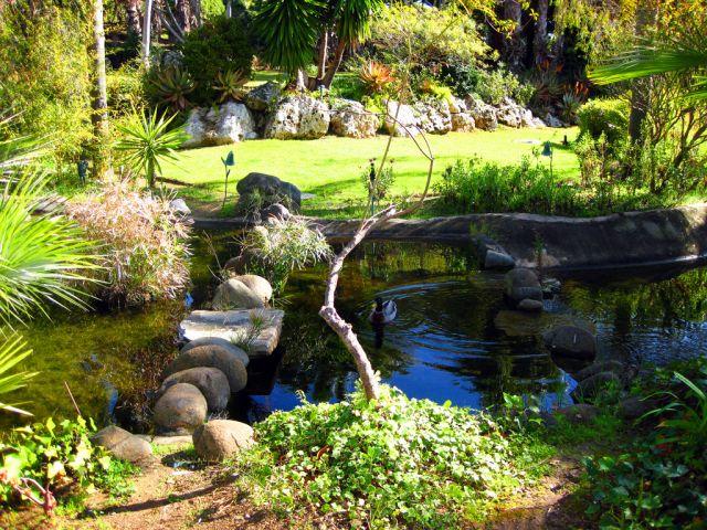 Jard n japones fotos de naturaleza Jardin japones informacion