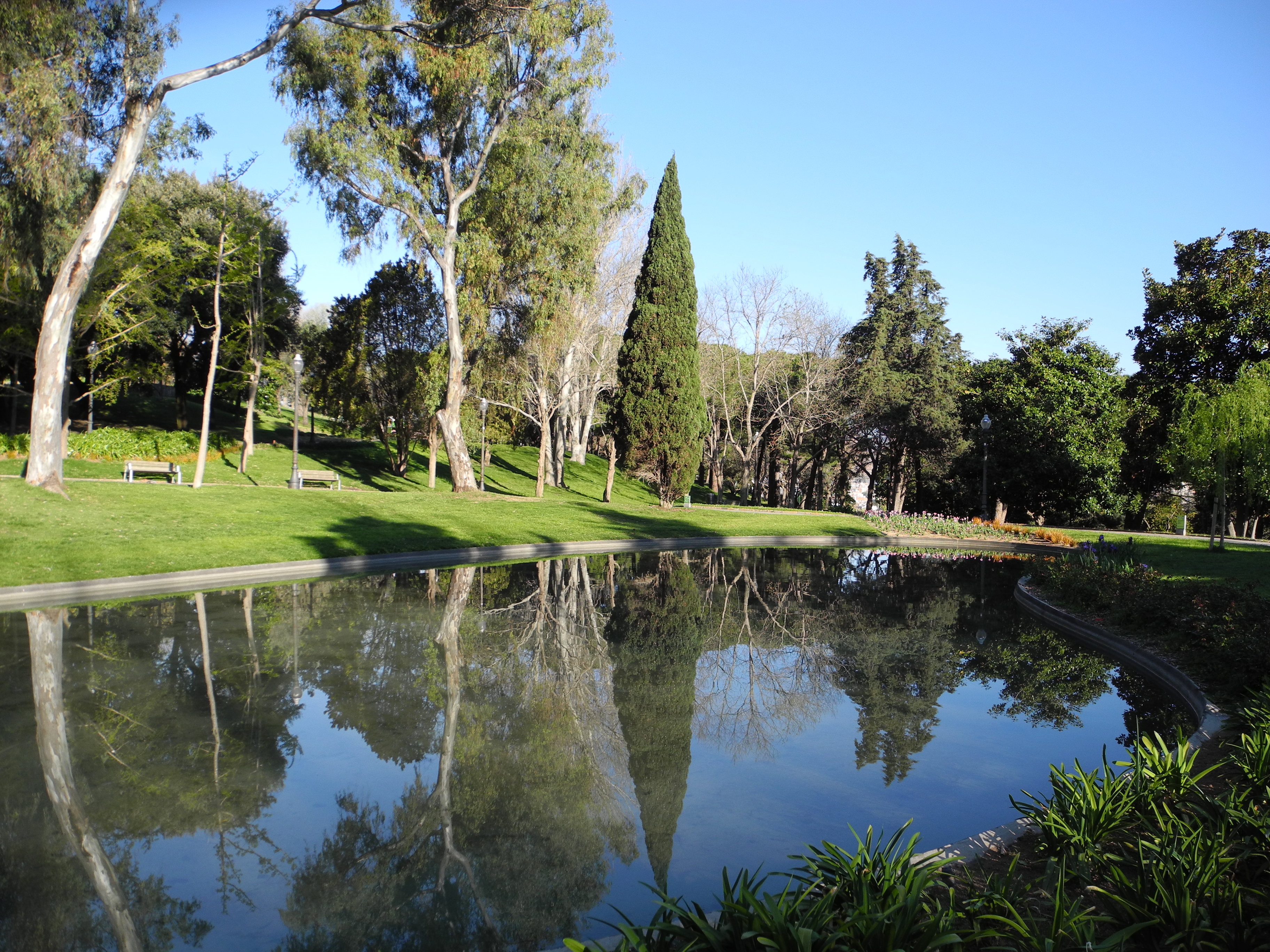 Jardines de barcelona fotos de naturaleza - Jardines de barcelona ...