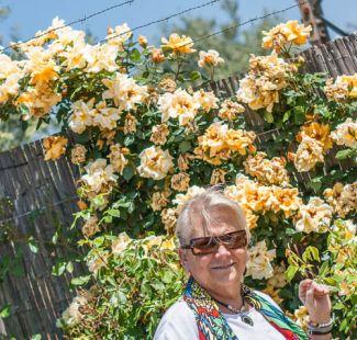 Maria Jose y las Rosas