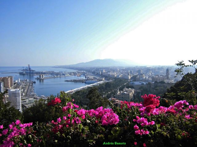 Málaga florida