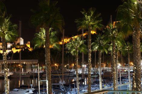La Alcazaba a través de palmeras