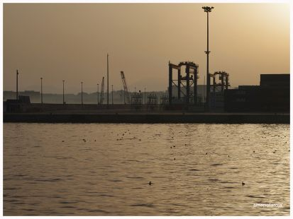 Puerto de M�laga