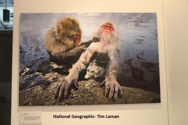 National Geographic en Hamburgo