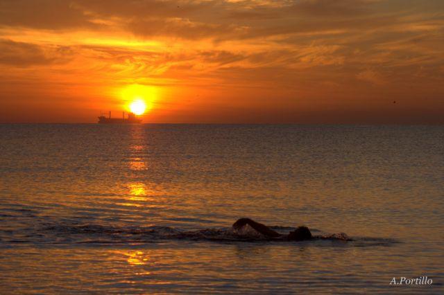 Nadando al amanecer