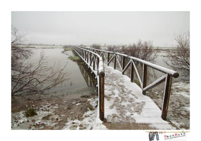 Laguna de Fuente de Piedra nevada
