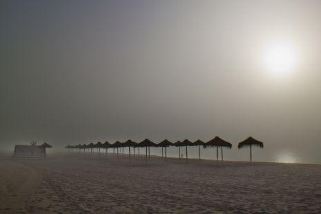 niebla al amanecer