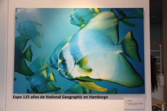125 de National Geographic