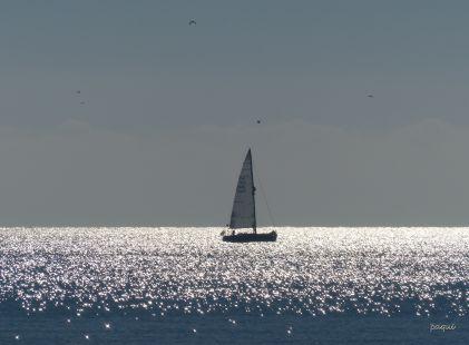 Viaje por el mar