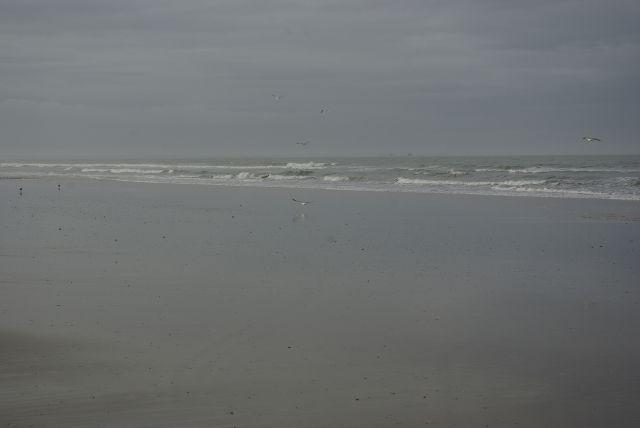 mar en doñana