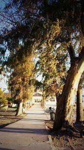 Ba�os del Carmen