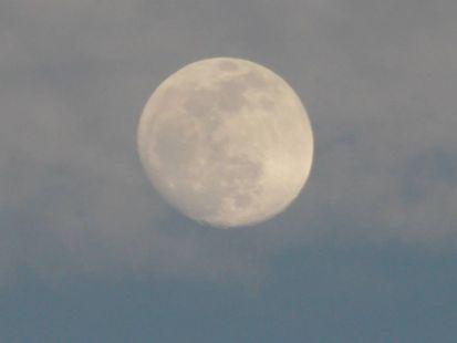 Luna entre tinieblas