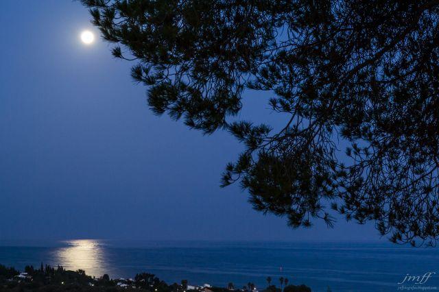 luz de luna (2)