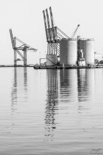 Colosos del puerto