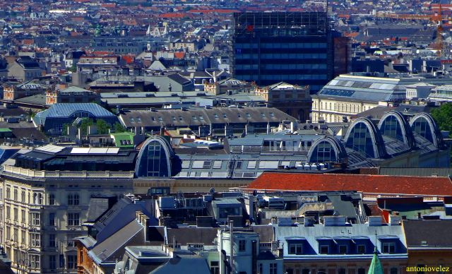 Por los tejados de Viena