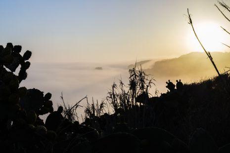 La niebla 5
