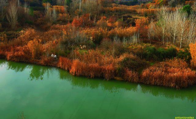 Lago en invierno