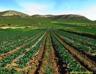 Cortijo del Fraile-Almería
