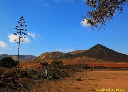 Campos de Níjar-Almería