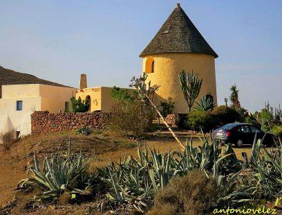 Molino de los campos de Níjar-Almería
