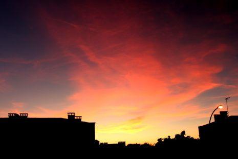Desde mi ventana 1