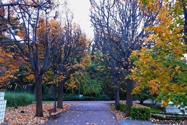 Jardines Joan Maragall-Barcelona