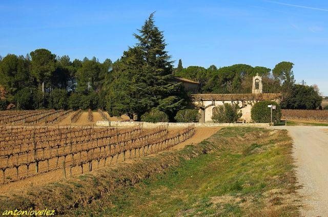 Ermita Sant Joan Salerm-Penedés