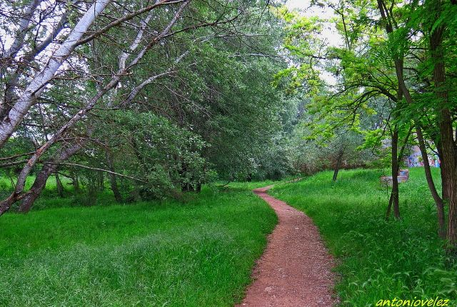 Caminos de primavera